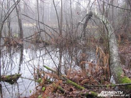 Озеро облюбовали призраки и нло
