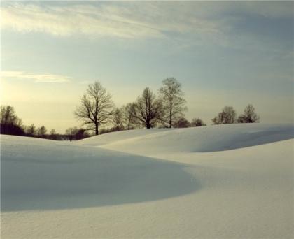 http://images.aif.ru/001/085/108955e5c093298f2441d26108b92847.jpg
