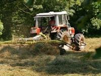 Аренду земельных паев в Украине упростят