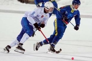 Из-за теплой погоды в Новосибирске перенесены хоккейные матчи