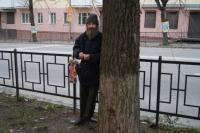 Внезапное появление Евгения Агафонова под деревом забеспокоило многих обитателей улицы Фрунзе