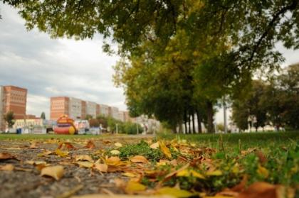 В Челябинске сегодня без существенных осадков
