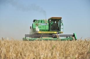 Южноуральские аграрии будут засеивать еще больше земель