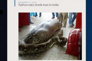Змея съела человека Анаконда съела человека заживо