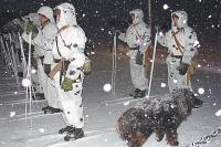 Снег на Новой Земле лёг больше месяца назад. Лыжный патруль готовится охранять территорию.