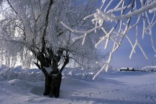 Погода на 3 дня черкассы украина