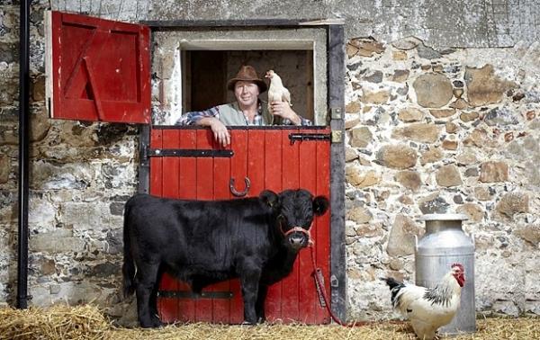 Самый маленький бык живет в Северной Ирландии. Арчи — так зовут бычка — рост 76.2 см.