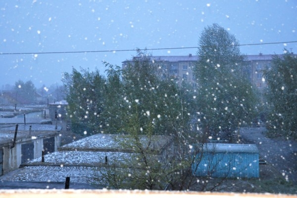 Снегопад в Тыве 13 мая 2013 г.