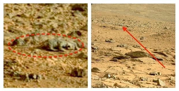 Рельеф на снимке, сделанном марсоходом «Curiosity», выглядит, как окаменелый скелет ящерицы.