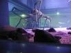 Японский краб-паук. Масса до 20 кг. Длина тела (головогруди без ног) до 37 см, с ногами до 4 м. Обитает на глубинах 150—800 м, но чаще обнаруживается на глубине около 200—300 м. Во время яйцекладки поднимается до 50 м (в весенний период).