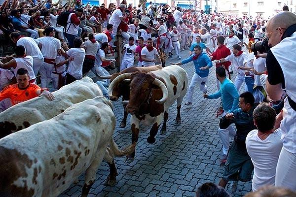 Забег быков по улицам Памплоны