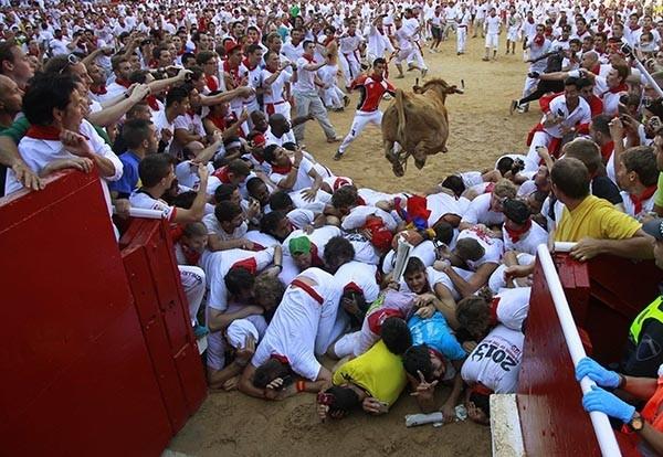 В конце забега, протяженностью около 850 метров, которые животные преодолевают за две с половиной минуты, быки вбегают на арену,