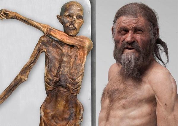 Сенсационная находка была обнаружена в Альпах чуть более 20 лет назад. В 1991 году в горах на границе Италии и Австрии немецкие туристы нашли старейшую мумию европейского человека. Ученые расшифровали геном Эци, а также воссоздали облик, который он мог им