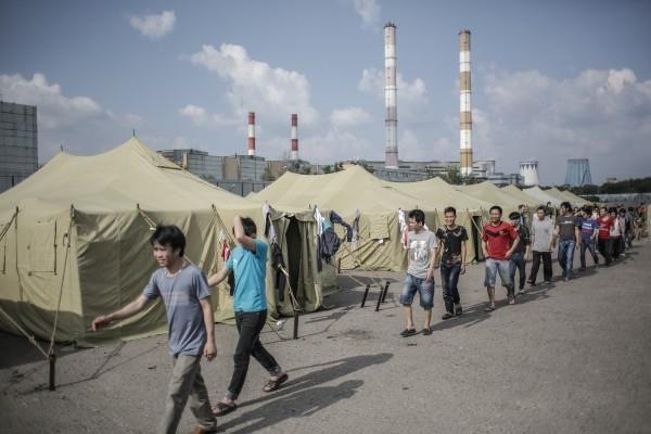 Количество мигрантов, доставленных во временный палаточный лагерь на востоке Москвы, достигло 544 человек.