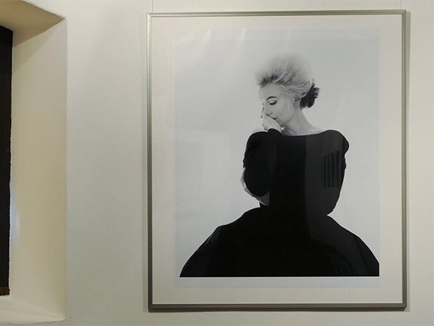 Это фото Мэрилин Монро, сделанное Бертом Штерном входит в коллекцию наследия актрисы и входила в экспозицию сразу нескольких выставок, в том числе «Мифы Мэрилин», прошедшей во многих залах Европы и Северной Америки.
