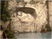 Знаменитый памятник «Умирающий лев», созданный Бертелем Торвальдсеном в Люцерне, Швейцария. Мемориал посвящён швейцарским гвардейцам, погибшим во время штурма дворца Тюильри в 1792 году. Фото 1900 года.