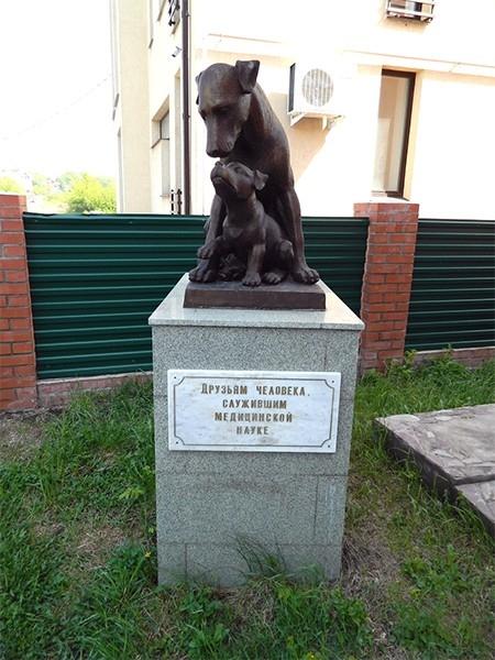 В Уфе установлен памятник подопытным животным, на котором изображены две собаки — взрослая особь и маленький щенок. Надпись на постаменте гласит: «Друзьям человека, служившим медицинской науке».