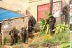 Силовики ворвались в здание, после чего заявили, что спецназ контролирует здание, однако затем вновь были слышны звуки стрельбы. Около десяти террористов были задержаны, ещё несколько захватчиков убиты в ходе операции.