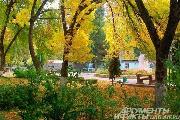 Осень в Махачкале.