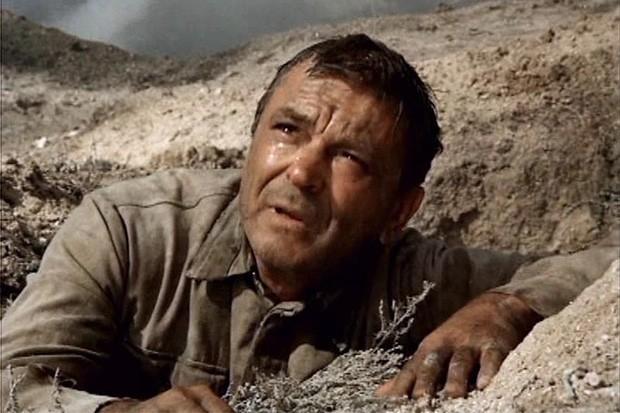 В 1974 году Сергей Бондарчук снял военный фильм «Они сражались за Родину». В основу картины лёг ещё один роман Михаила Шолохова, хотя писатель поначалу был против экранизации, однако позже всё же дал своё согласие. «Они сражались за Родину» превзошёл успе