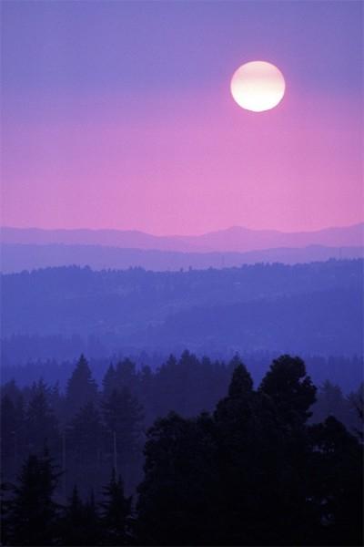 Луна в небе над лесом в Австрии.