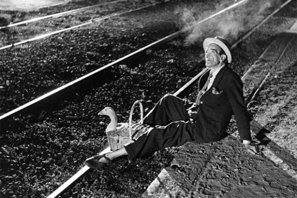 Дебют Федерико Феллини в кино состоялся в 1950 году, когда он совместно с Альберто Латтуадой поставил фильм «Огни варьете». Лента рассказывает о провинциальной труппе, вынужденной бедствовать.