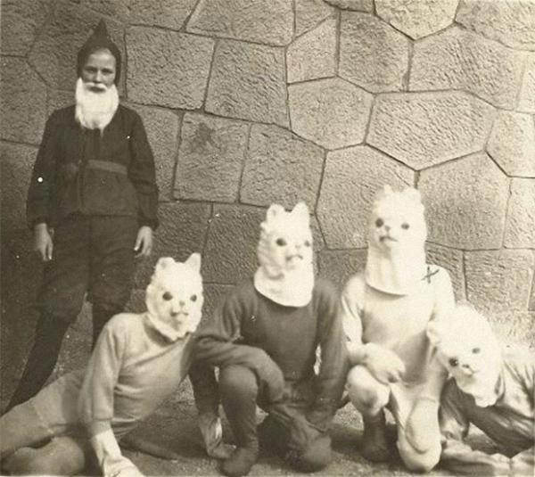 Коты и кошки популярны были всегда.