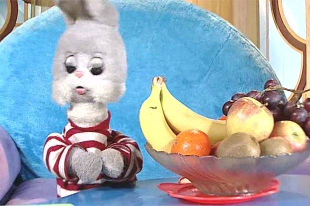 Одной из главных звёзд передачи «Спокойной ночи, малыши!» уже долгие годы остаётся заяц Степашка. Он дебютировал в программе в 1970 году и с тех пор остаётся одним из постоянных ведущих проекта.