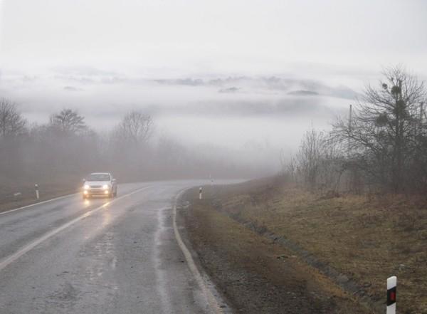 «Из тумана»