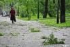 Поваленные ветки в Покровском парке