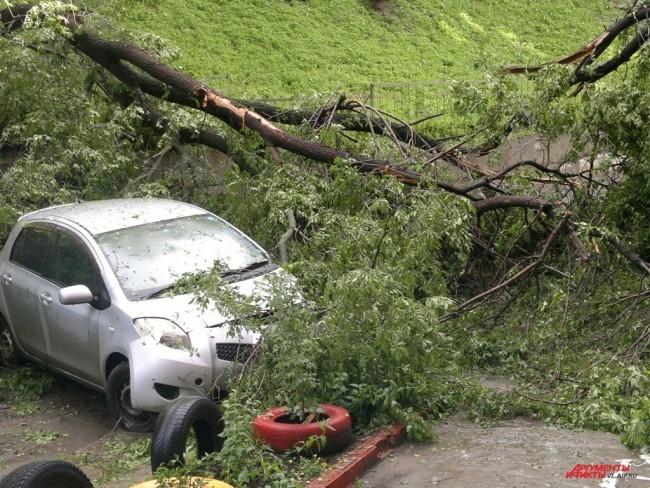 Дерево зацепило припаркованный автомобиль