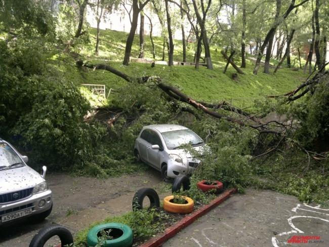 На Русской, 65а дерево упало во двор