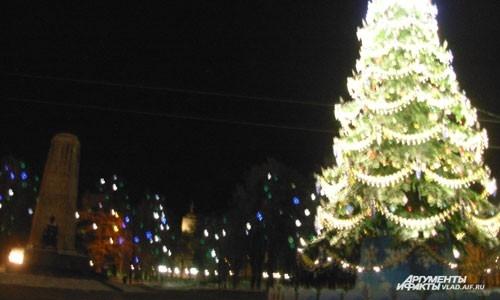 главная елка Владимира на Соборной площади
