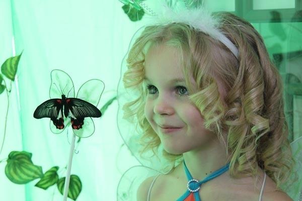 В Волжском открылась выставка бабочек