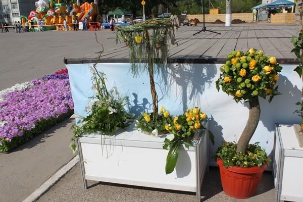 Фестиваль «Моя цветущая улица»