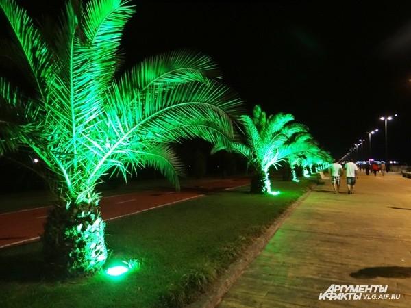 На набережной растут пальмы в виде ананасов