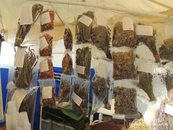 Ароматные травы из экологически чистых мест Волгоградской области