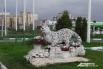 Белый барс является символом казанской хоккейной команды