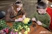 Урок ботанического мастерства