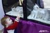 Мальчик развлекает котят