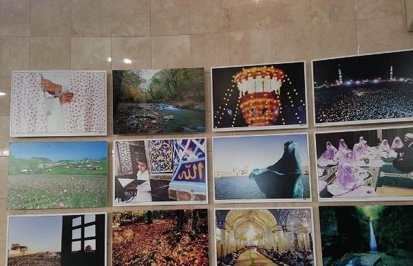 Картины из Ирана