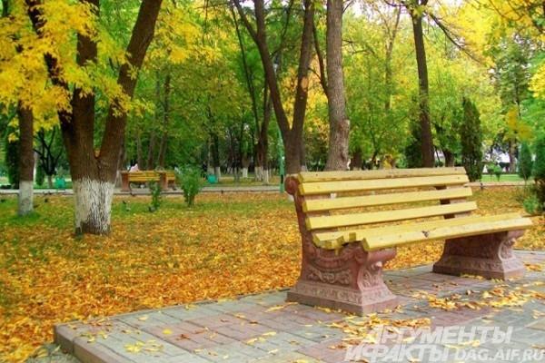 Парк Махачкалы пестрит красками