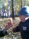 Костя рассматривает красоту осенней листвы. Константин, 1 год 4мес.
