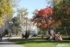 Студенты любят сидеть на газоне сквера