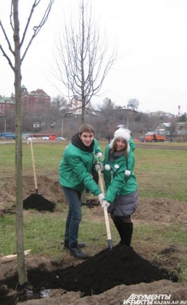 Посадка деревьев в рамках акции «Зеленый рекорд»