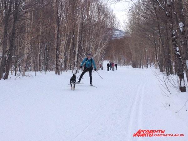 На лыжной базе «Лесная» катались даже собаки