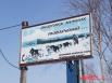 Питомник расположился в районе лыжной базы «Лесная»