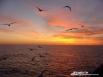 Закат в море. Камчатка