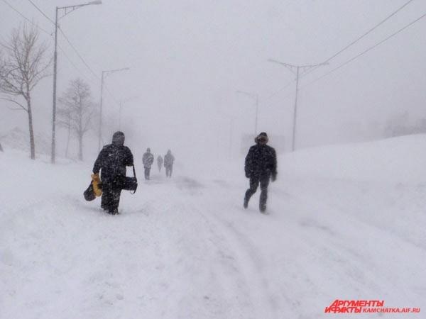 В снежной полумгле…