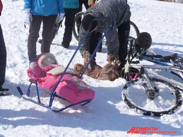 Болели даже дети и собаки!